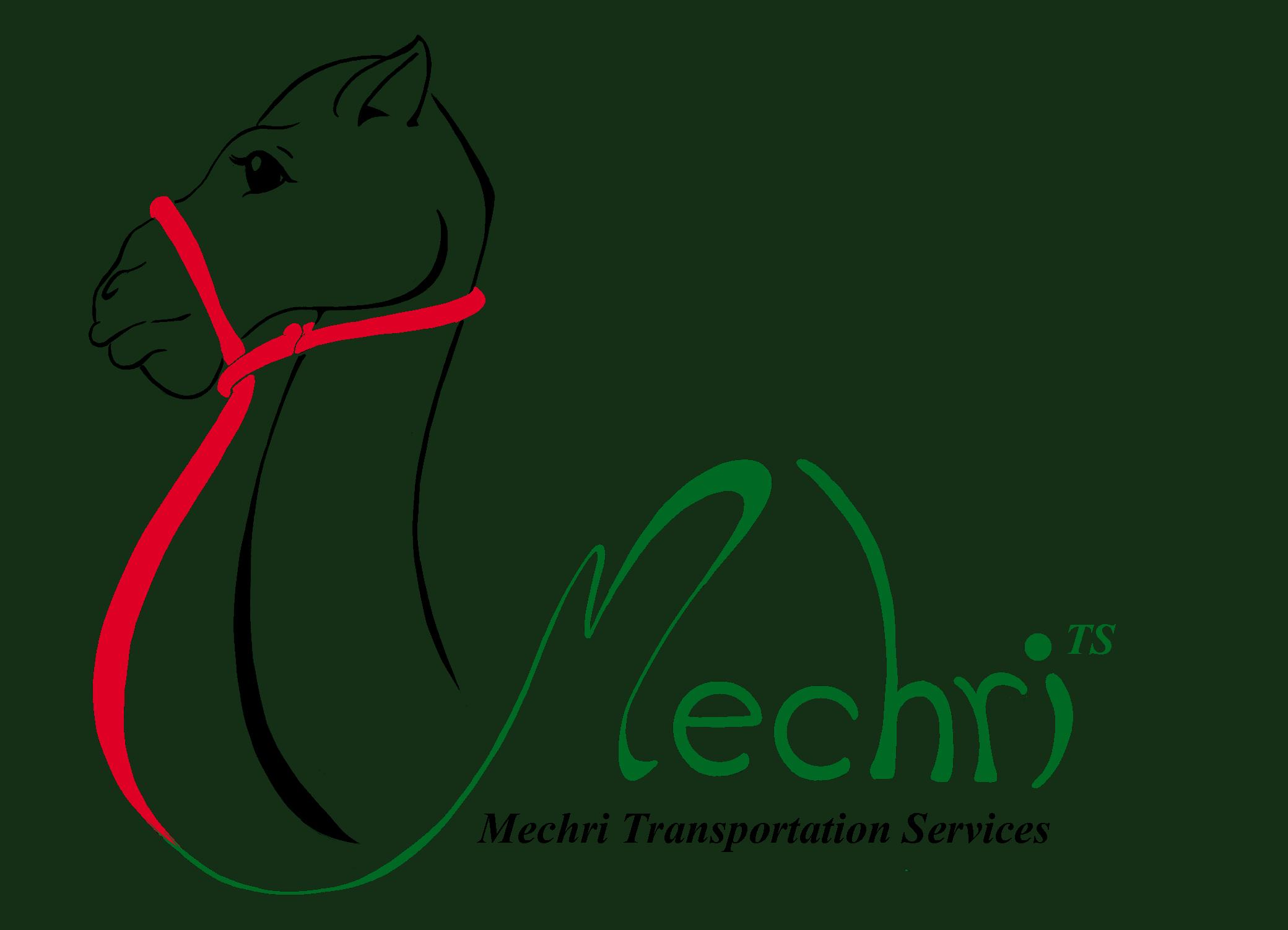 Mechri Transportation Services