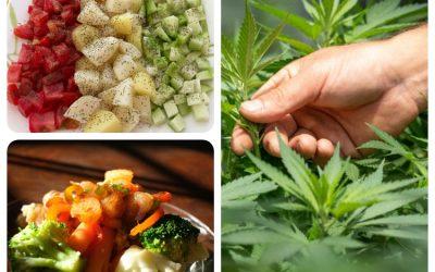 Innovative Wellness Trends